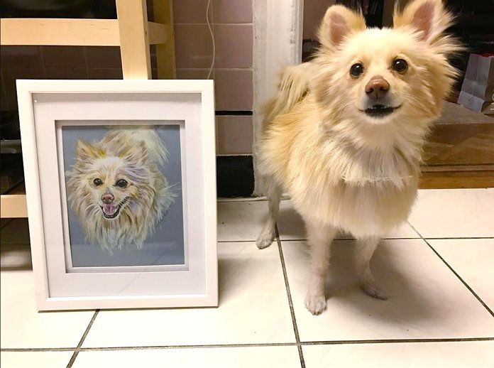 A Custom Pet Portrait