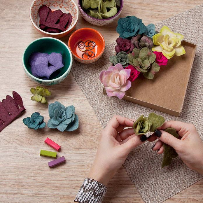 לא נדיר Goods Felt Succulents Kit